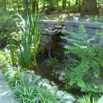 pond-moore-jpg