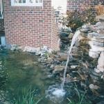 pond-swain-jpg